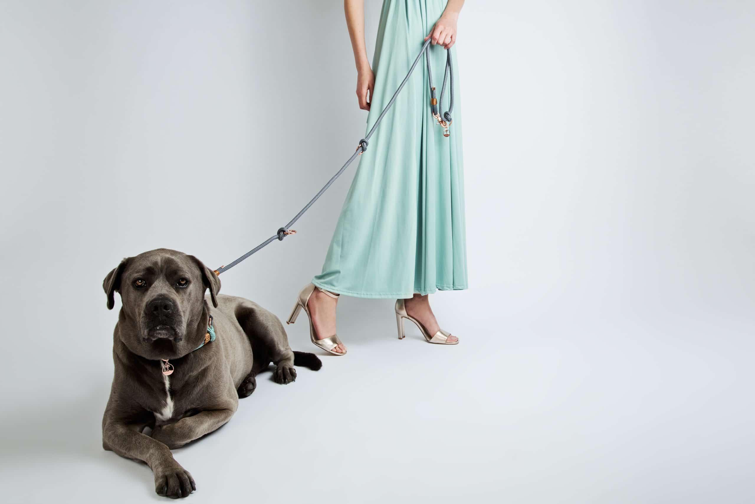VIDUALO® - Hundehalsband / Hundeleine - Fashion Collection